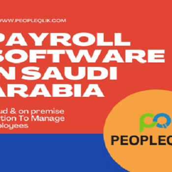 The Best Accounting and Payroll Software in Saudi Arabia for Business